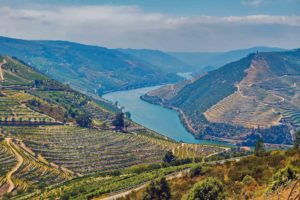 Duoro Valley Portugal