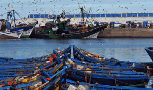 Morocco boats port Biotrek Adventure Travel Tours